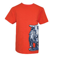 Thomas Cook Boys Bull Applique S/S Tee (T8S3501062)