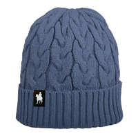 Thomas Cook Womens Cable Knit Beanie (T0W2948BNE) Blue _W20